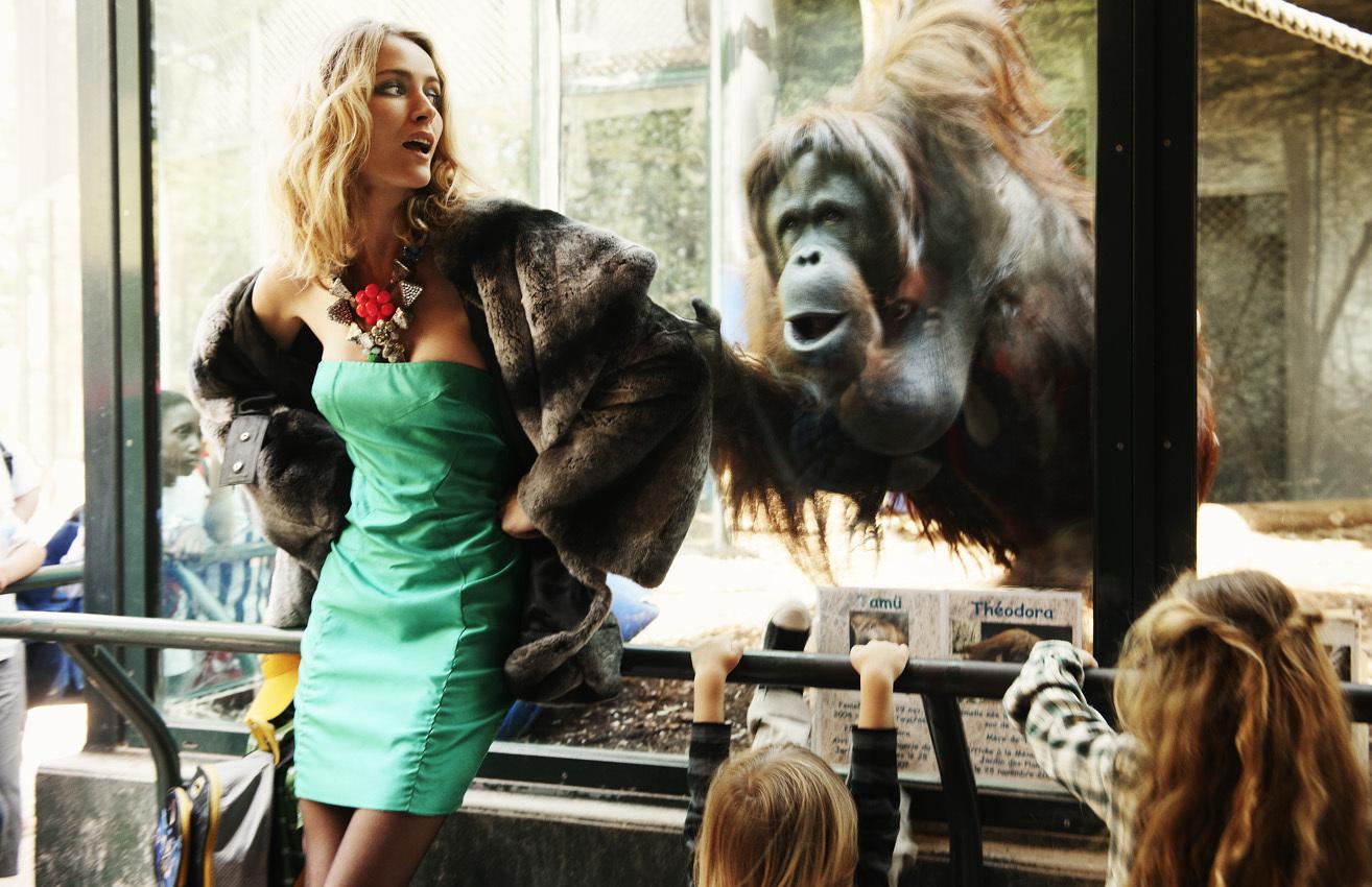 David Burton — Paris Zoo