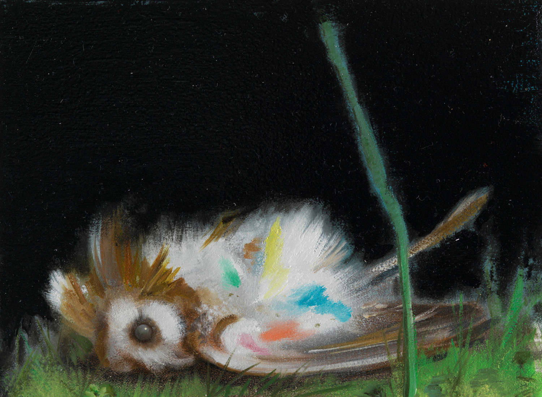 Dead owl – Nigel Cooke