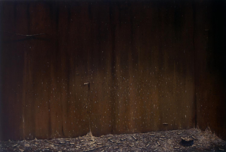 Aviary – Nigel Cooke